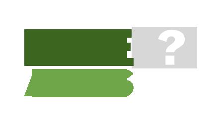 dae-asks-trans