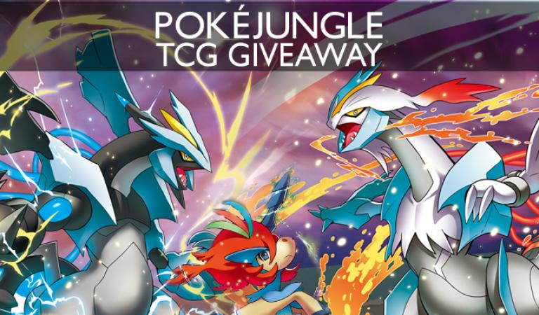 PokéJungle TCG Giveaway