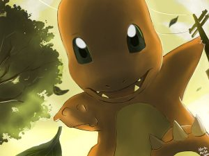 pokemon charmander by mark331