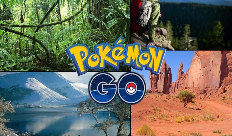 Pokémon GO : What We Need to Ask!